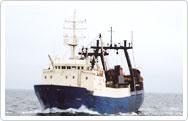 спк рыбак балтики рыболовецкий колхоз